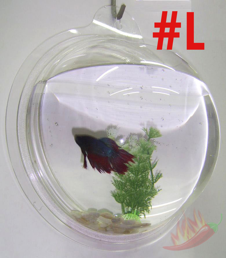 Wall Hanging Mount Bubble Aquarium Bowl Fish Tank L Ebay